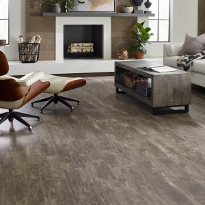 Paramount Plus Jade Oak Family room | Andy's 5 Star Flooring