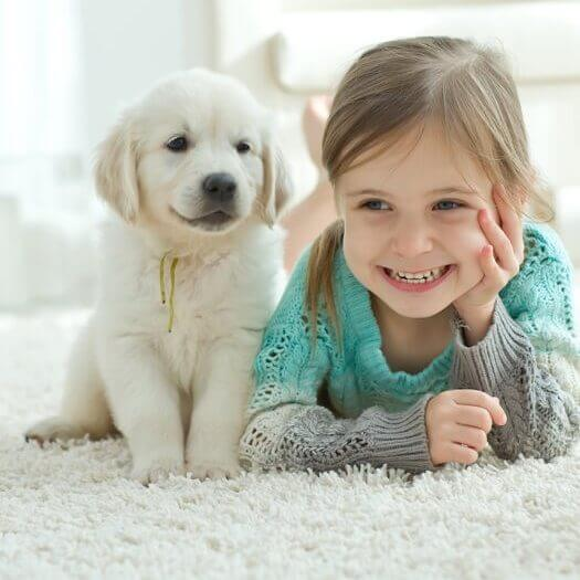 Girl with pet on Carpet | Andy's 5 Star Flooring