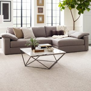 Perfect Carpet in living rooms | Andy's 5 Star Flooring