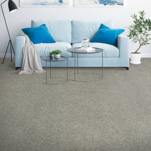 Placid Reflection carpet | Andy's 5 Star Flooring