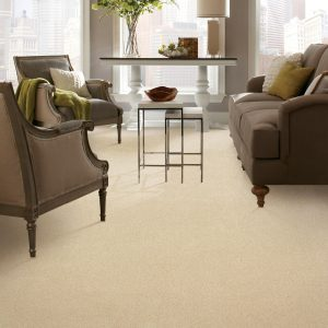 Carpet in living room | Andy's 5 Star Flooring