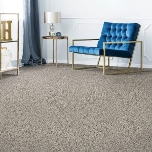 Remarkable carpet Vision | Andy's 5 Star Flooring
