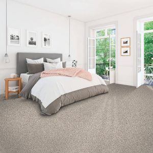 Soft Accolade carpet | Andy's 5 Star Flooring