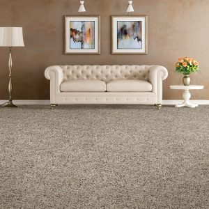 Soft Distinction carpet flooring | Andy's 5 Star Flooring