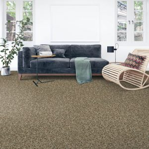 Soft Intrigue carpet floor | Andy's 5 Star Flooring