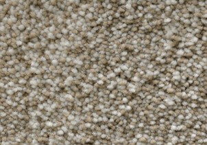 stainmaster-plush-carpet