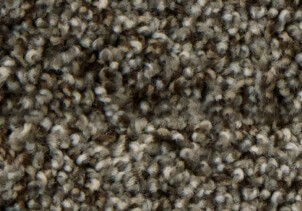 stainmaster-textured-carpet