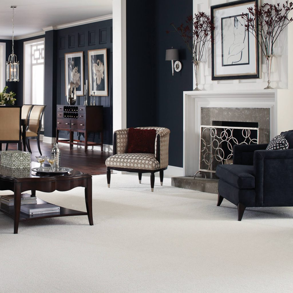 White Carpet in living room | Andy's 5 Star Flooring